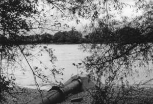 Le ruiseau et la Seine